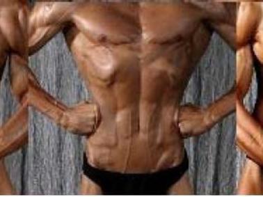 posing ein berblick bodybuilding krafttraining muskelaufbau sportarten. Black Bedroom Furniture Sets. Home Design Ideas