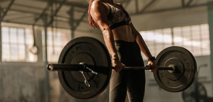 Langhanteltraining: Effektive Übungen für den Muskelaufbau! Kraftzuwachs, gesunde Körperhaltung. Trainingsplan, Kniebeugen, Kreuzheben, Ausführung