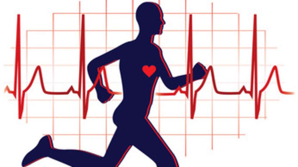 Was sagt die normale EKG-Kurve übder die Herzfunktion aus und was ...