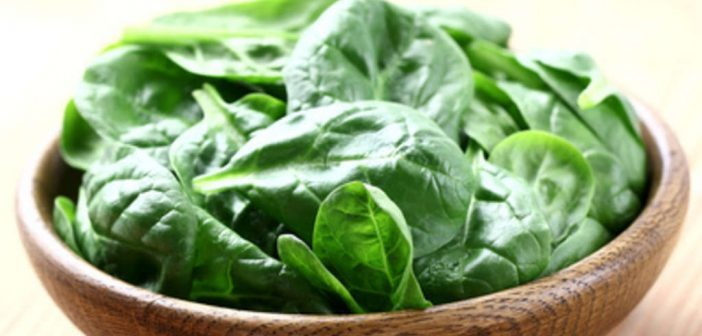 Sorgt Spinat wirklichfür ein höheres Muskelwachstum