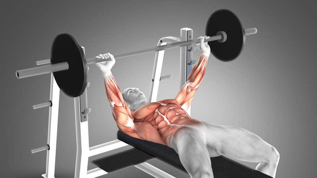Schulterverletzungen beim Bankdrücken effektiv verhindern ...