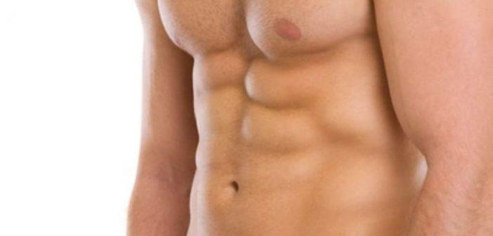trainingssysteme pitt force bodybuilding fitness krafttraining muskelaufbau training. Black Bedroom Furniture Sets. Home Design Ideas