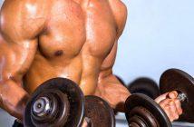 Muskelmasse: Trainingstipps und Ratgeber