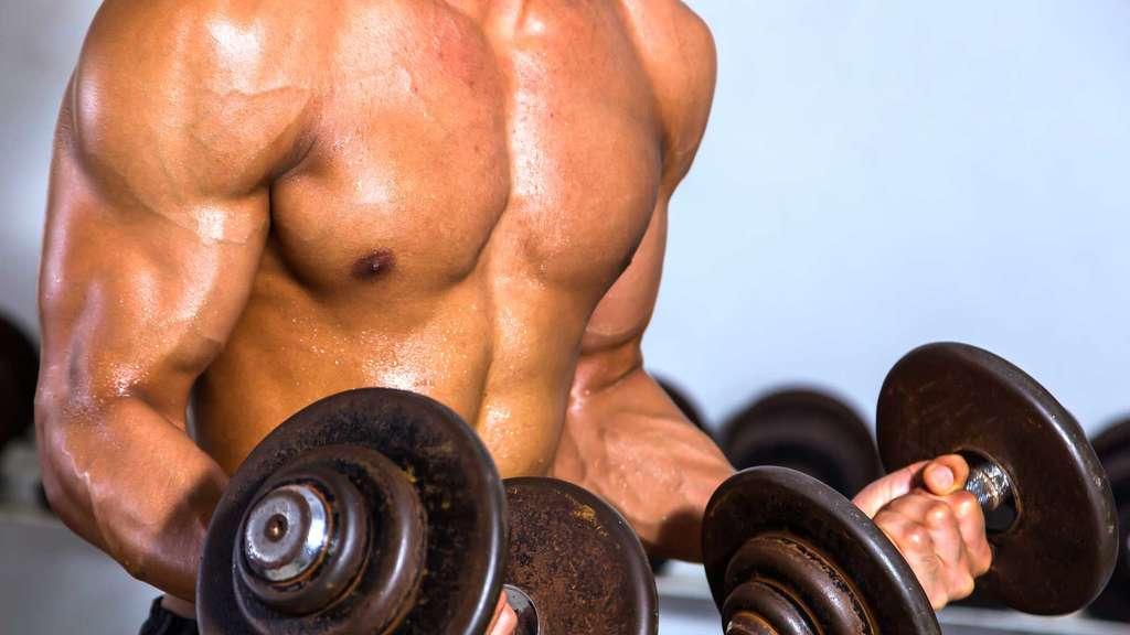 Ist Muskelmasse wirklich eine Frage der Trainingsintensität ...