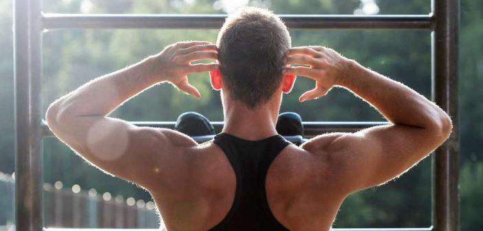 HIT-Basics: Übungen für Männer. Zehn Basisübungen für alle wichtigen Muskelbereiche in der richtigen Reihe: Brust, Rücken, Beine, Schultern, Arme & Bauch