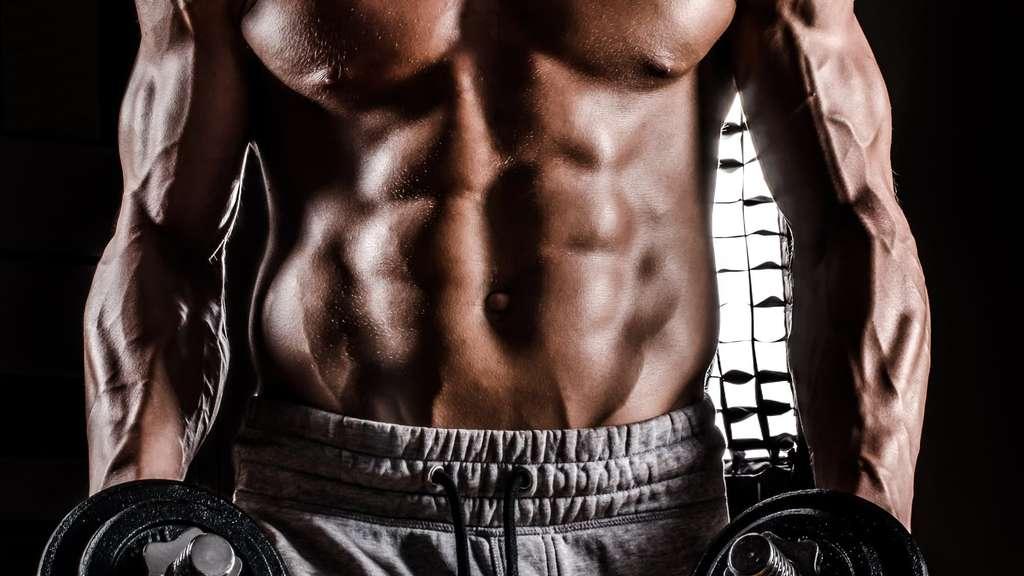 ▷ Muskelaufbau erfordert Zeit und Konsequenz im Training