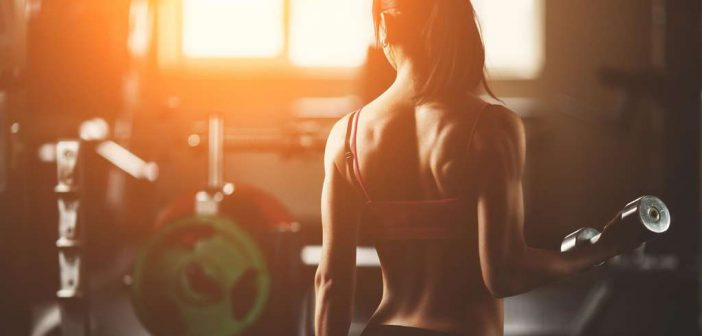 Ratgeber und Tipps rund um das Thema Fitness für Anfänger