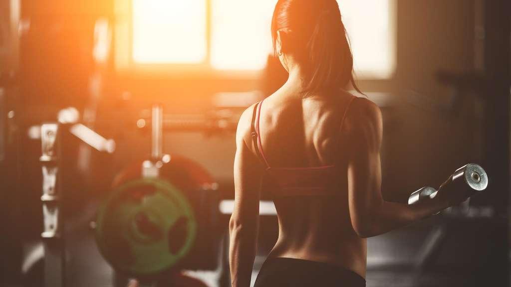Anfänger Volume Gym Diät