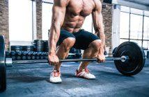 Maximalkrafttraining: Ratgeber & Studien zu effektivem Muskelaufbau und Kraftzuwachs: Übungen | Trainingspläne | Aufbau | Sätze