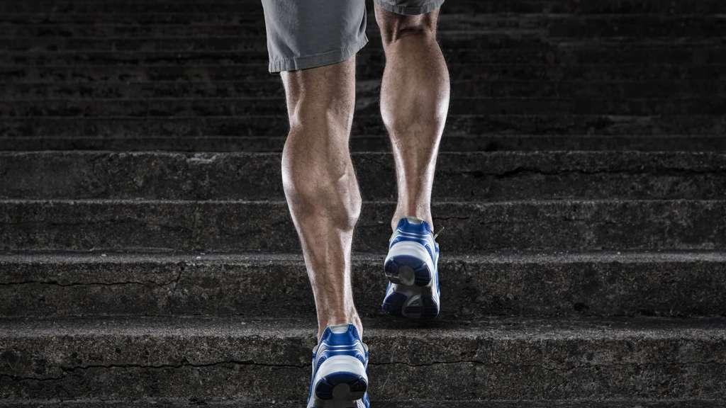 FersenschmerzSportmedizinLaufen Hilft Gegen Was FersenschmerzSportmedizinLaufen Hilft Gegen FersenschmerzSportmedizinLaufen Was Was Was Hilft Gegen rdexQCBWo