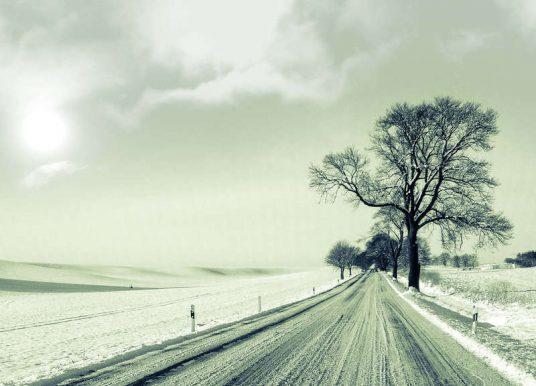 Laufen im Winter: Tipps für das Training bei Kälte, Eis und Niederschlag