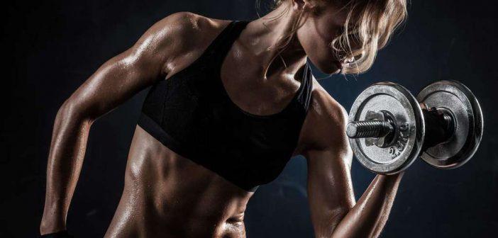 Fettverbrennung: Trainingstipps und Übungen