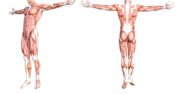 Was tun bei Muskelschmerzen