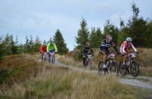 Mountainbike - Alles, was du wissen musst | Angriffsposition
