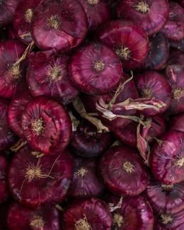 Entzündungshemmende Lebensmittel, Rote Zwiebeln