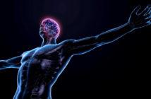 Neueste Erkenntnisse aus dem Neuro-Athletik-Training: Übungen für das zentrale Nervensystem