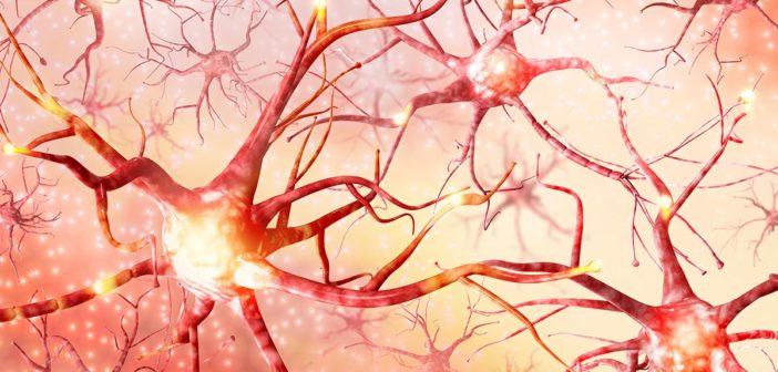 So erkennen Sie eine Übersäuerung am Nervensystem