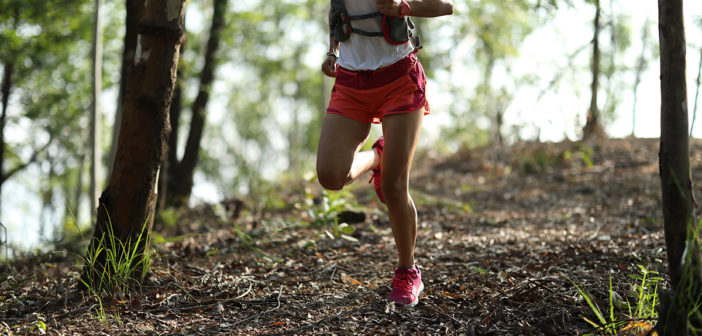 trailrunning: trails, laufen, ausrüstung, technik,tipps, training