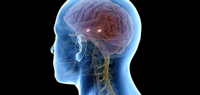 neuronale heilung: ratgeber und tipps