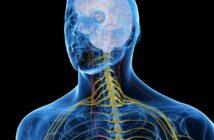 Vagusnerv Stimulation für ein gesundes Immunsystem, weniger Stress und gegen innere Unruhe