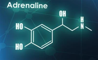 Neurotransmitter Adrenalin